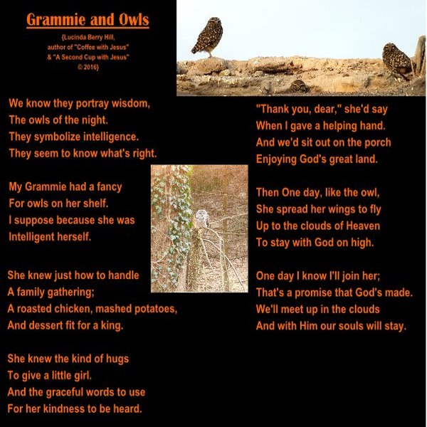GRAMMIE AND OWLS