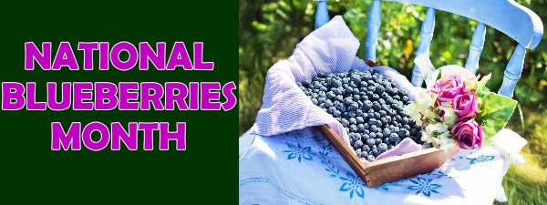TL JULY IS NATIONAL BLUEBERRIES MONTH